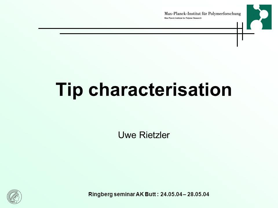 Ringberg seminar AK Butt : 24.05.04 – 28.05.04 Tip characterisation Uwe Rietzler
