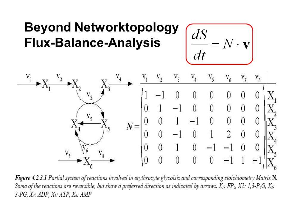 Beyond Networktopology Flux-Balance-Analysis
