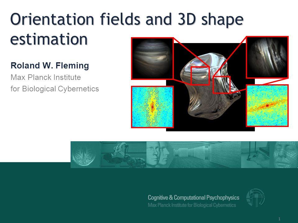 1 Orientation fields and 3D shape estimation Roland W.