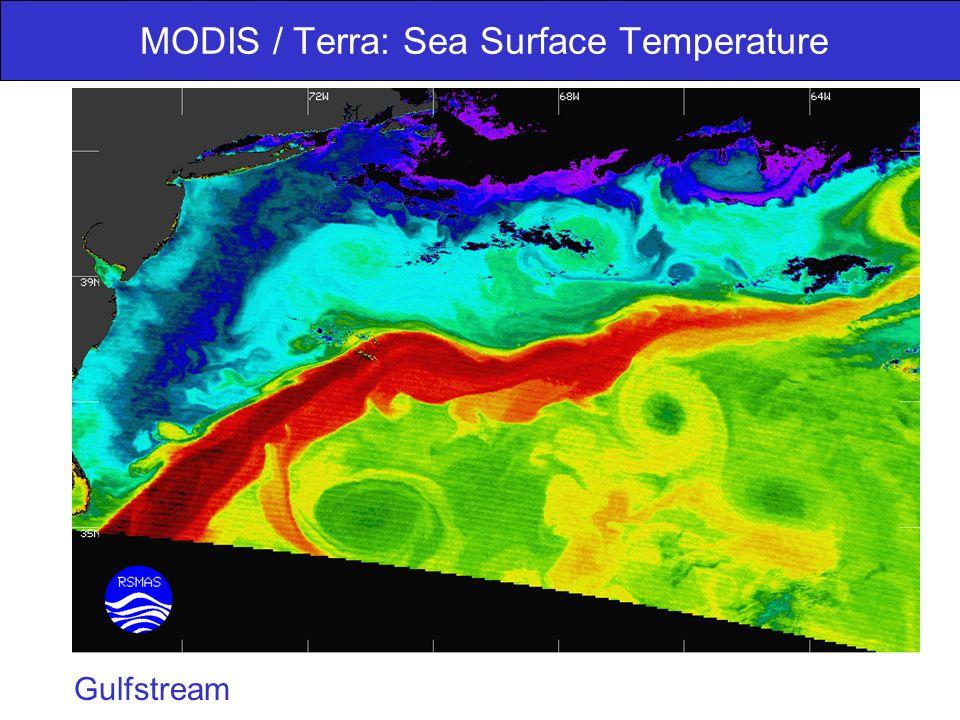 MODIS / Terra: Sea Surface Temperature Gulfstream