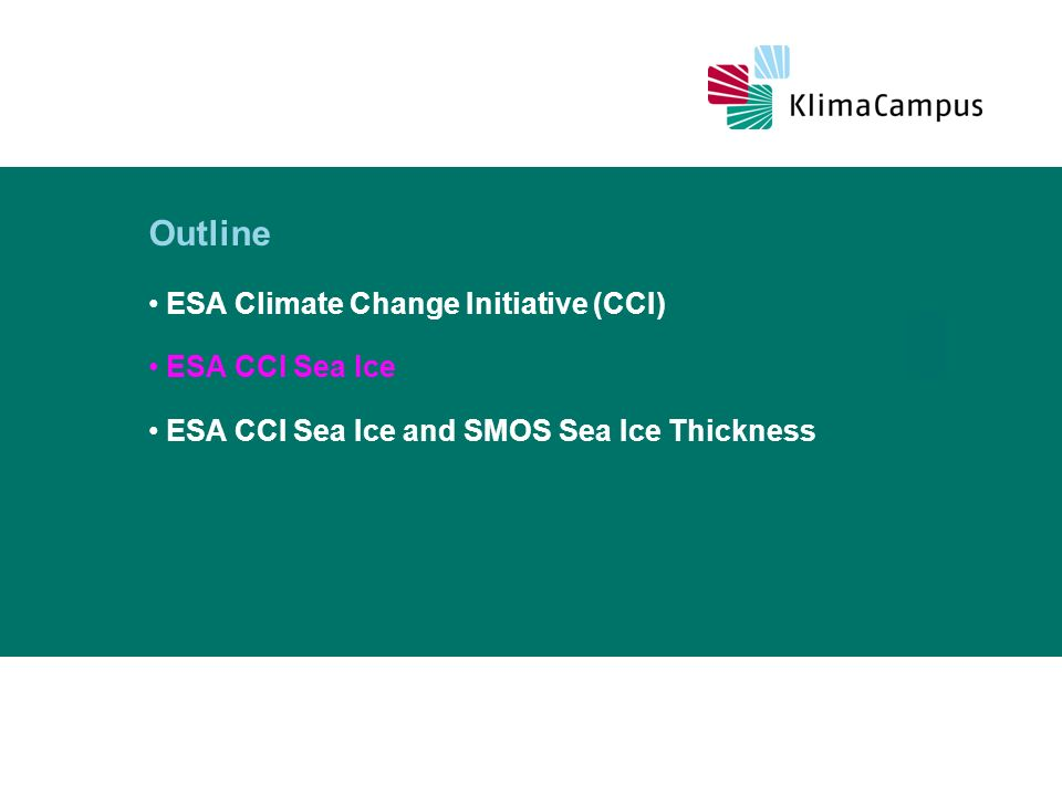 ESA CCI Sea Ice – User questionnaire A user questionnaire has been set up Which sea-ice parameters are how important for you.