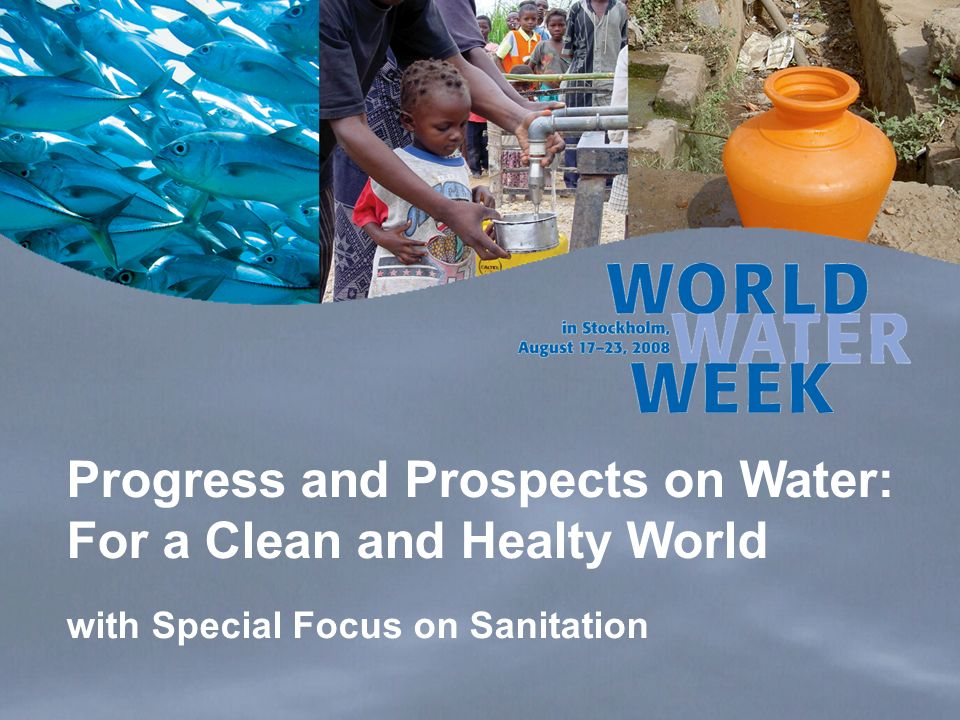 Progress and Prospects on Water: For a Clean and Healty World with Special Focus on Sanitation