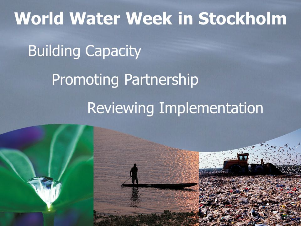 Building Capacity Promoting Partnership Reviewing Implementation World Water Week in Stockholm
