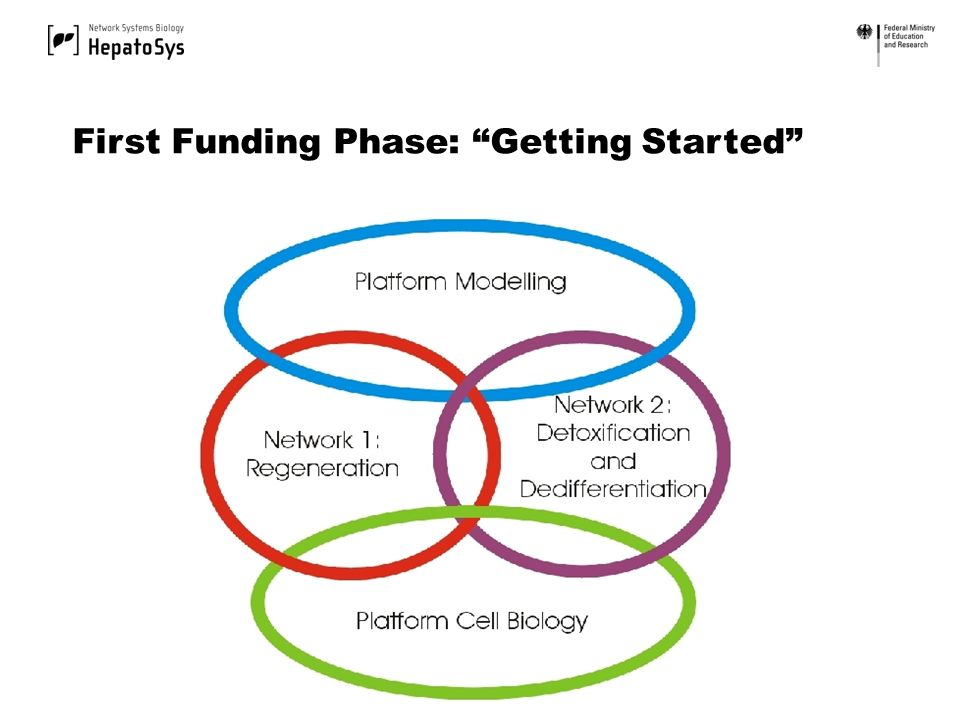 First Funding Phase: Getting Started