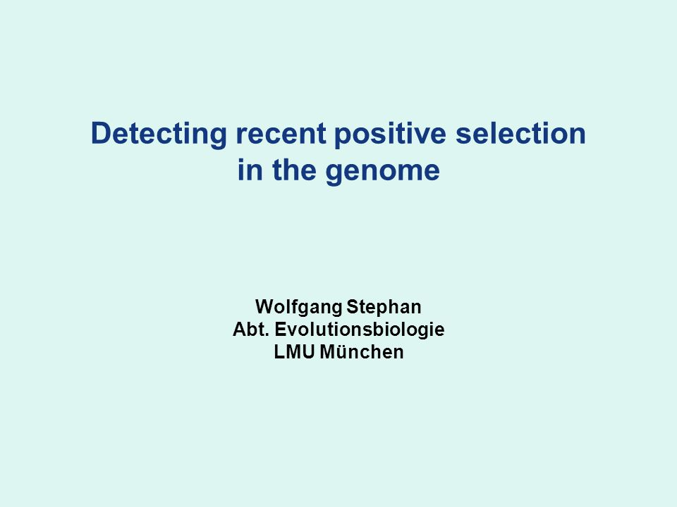 Detecting recent positive selection in the genome Wolfgang Stephan Abt. Evolutionsbiologie LMU München