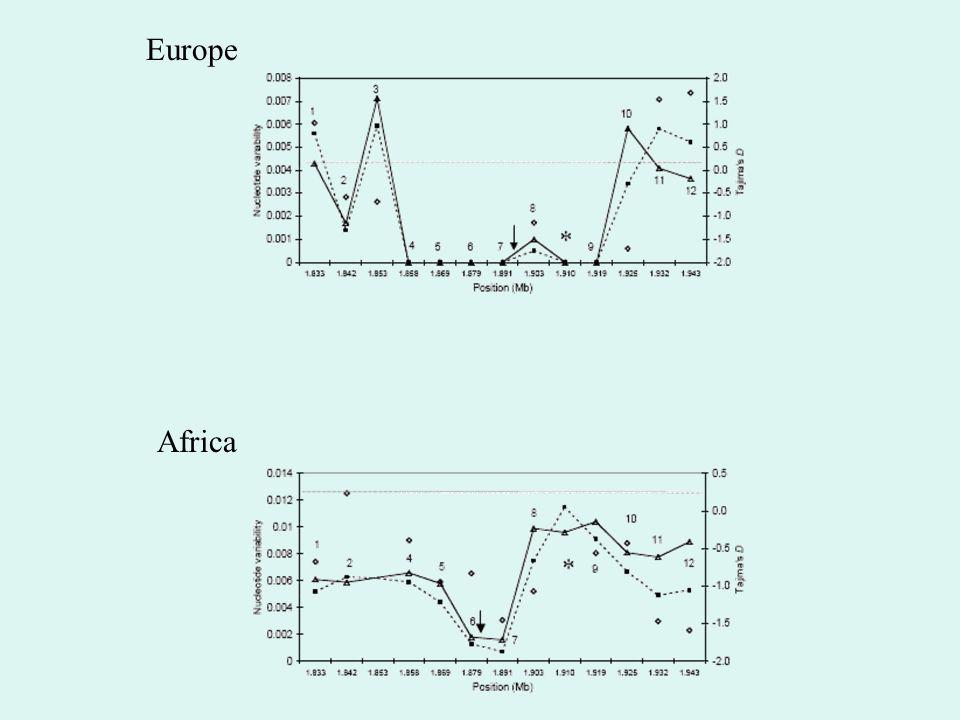 Europe Africa