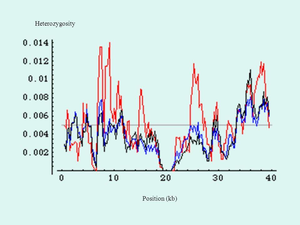 Position (kb) Heterozygosity