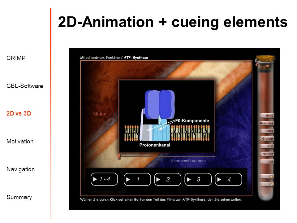 2D-Animation + cueing elements Motivation CRIMP 2D vs 3D CBL-Software Navigation Summary