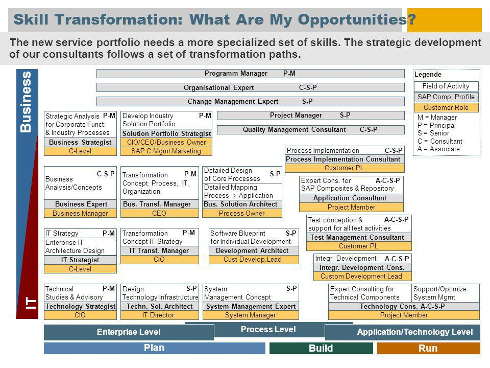 Skill Transformation: What Are My Opportunities. Business IT Field of Activity SAP Comp.