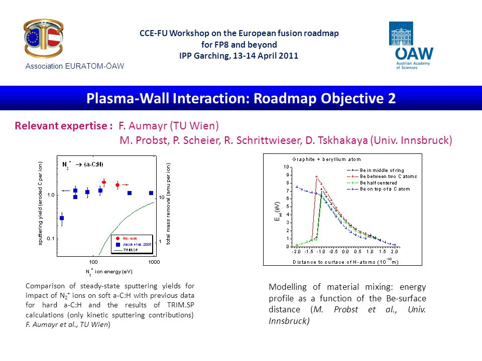 CCE-FU Workshop on the European fusion roadmap for FP8 and beyond IPP Garching, 13-14 April 2011 Predictive Modelling and Stellarator Physics: Roadmap Objectives 2 and 4 Relevant expertise: W.