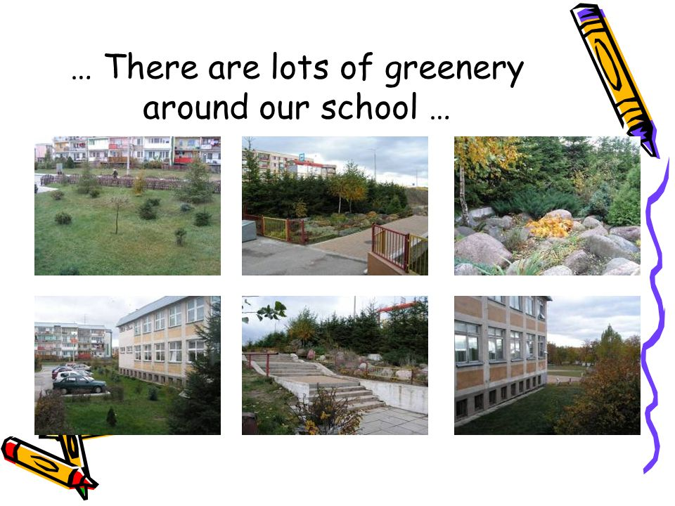… There are lots of greenery around our school …
