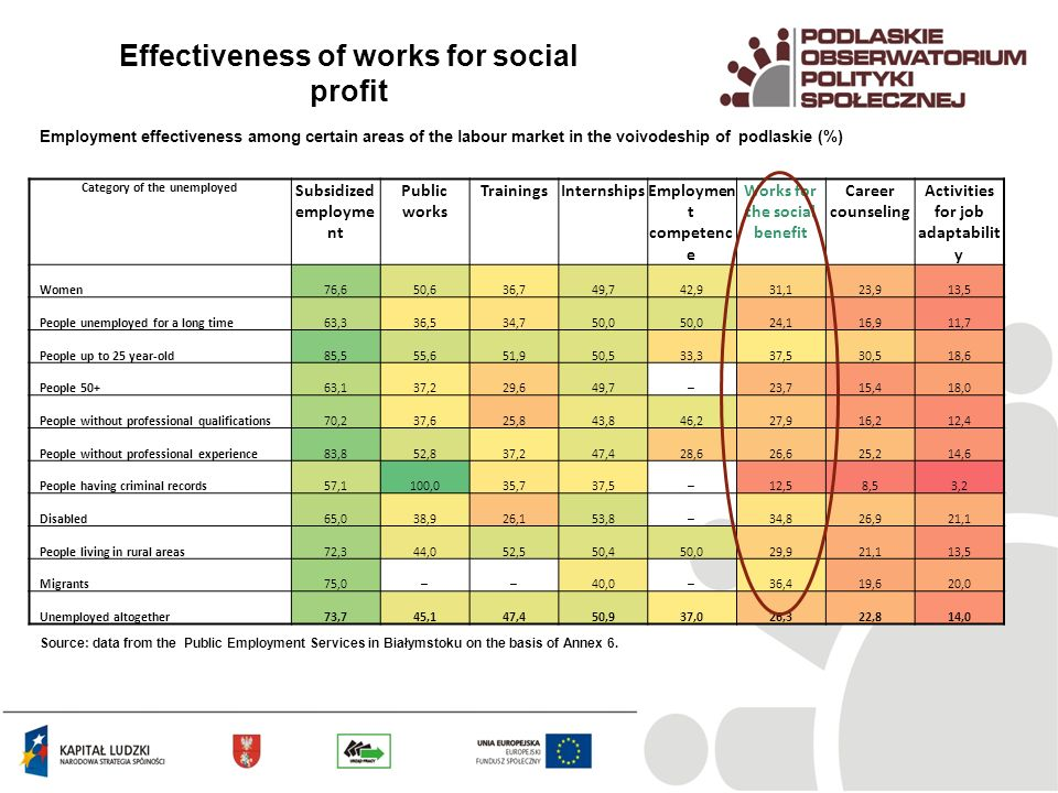 Effectiveness of works for social profit Employment effectiveness among certain areas of the labour market in the voivodeship of podlaskie (%) Source: data from the Public Employment Services in Białymstoku on the basis of Annex 6.