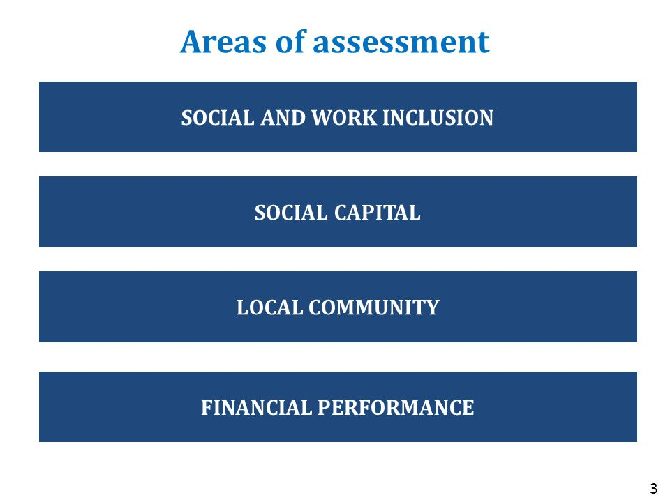 Areas of assessment 3 SOCIAL AND WORK INCLUSION SOCIAL CAPITAL LOCAL COMMUNITY FINANCIAL PERFORMANCE