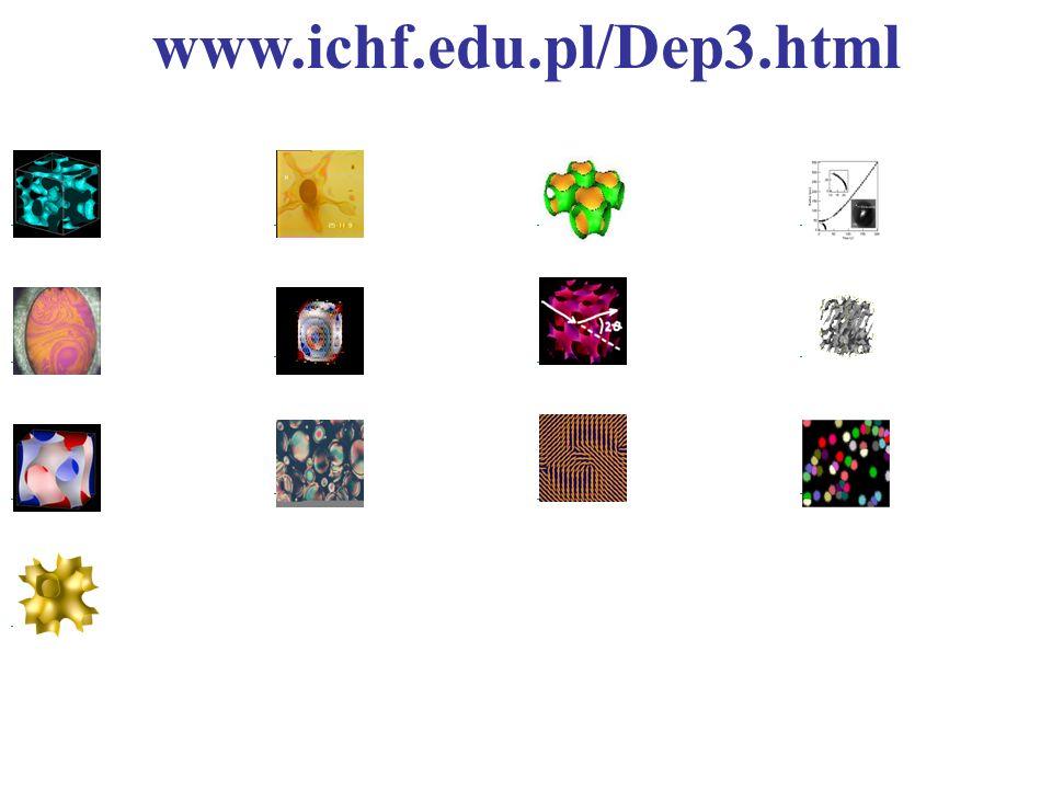 www.ichf.edu.pl/Dep3.html