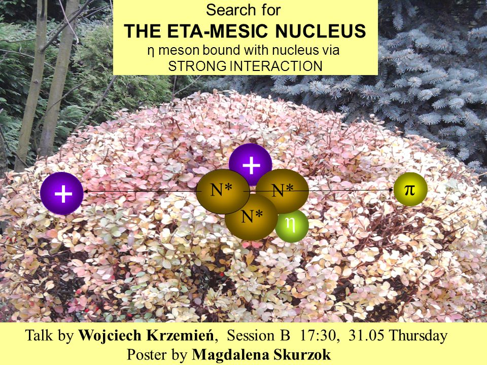 + + Search for THE ETA-MESIC NUCLEUS η meson bound with nucleus via STRONG INTERACTION η N* π G.