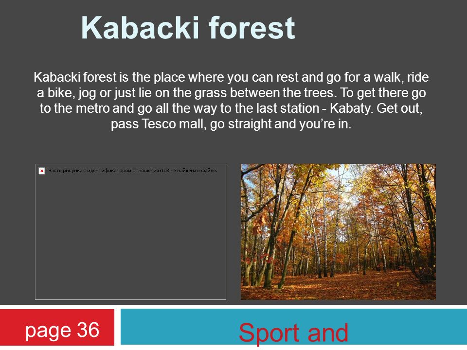 Kabacki forest is the place where you can rest and go for a walk, ride a bike, jog or just lie on the grass between the trees.