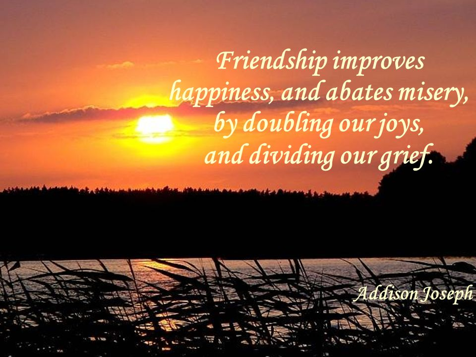 Friendship improves happiness, and abates misery, by doubling our joys, and dividing our grief. Addison Joseph