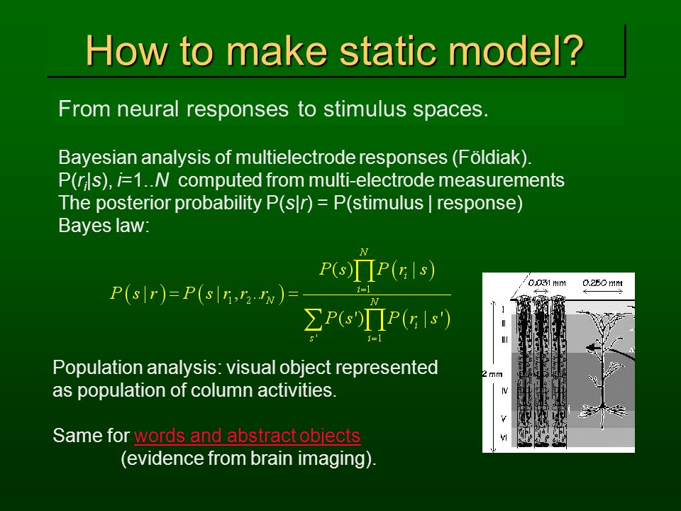 How to make static model? From neural responses to stimulus spaces. Bayesian analysis of multielectrode responses (Földiak). P(r i |s), i=1..N compute