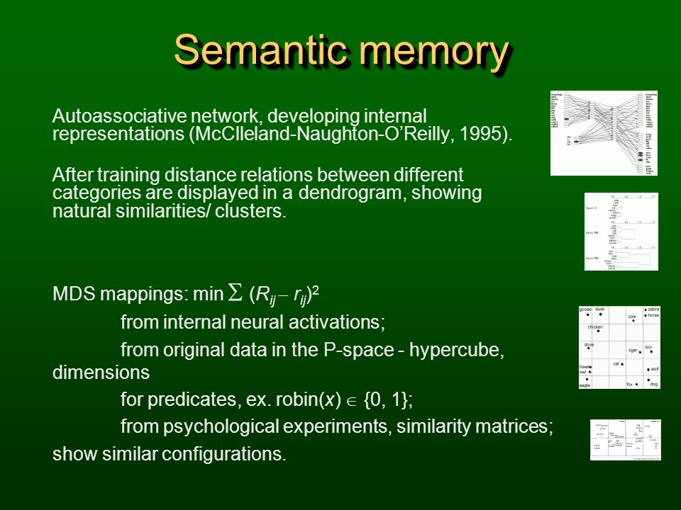 Semantic memory Autoassociative network, developing internal representations (McClleland-Naughton-OReilly, 1995). After training distance relations be