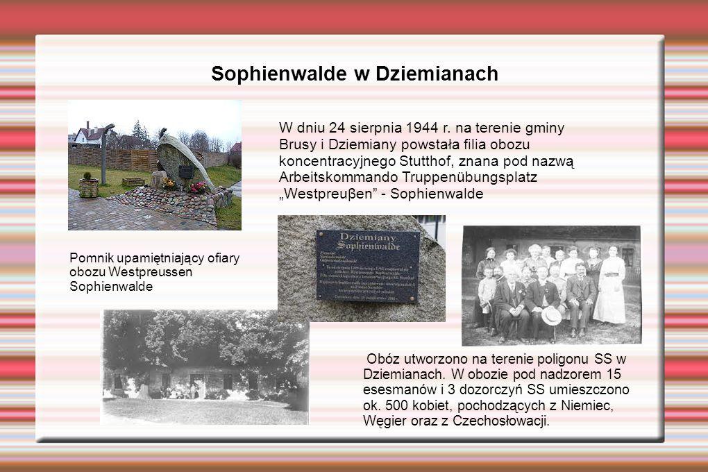Sophienwalde w Dziemianach Pomnik upamiętniający ofiary obozu Westpreussen Sophienwalde W dniu 24 sierpnia 1944 r. na terenie gminy Brusy i Dziemiany
