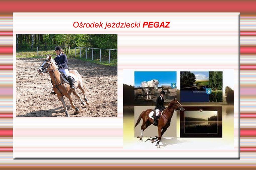 PEGAZ Ośrodek jeździecki PEGAZ