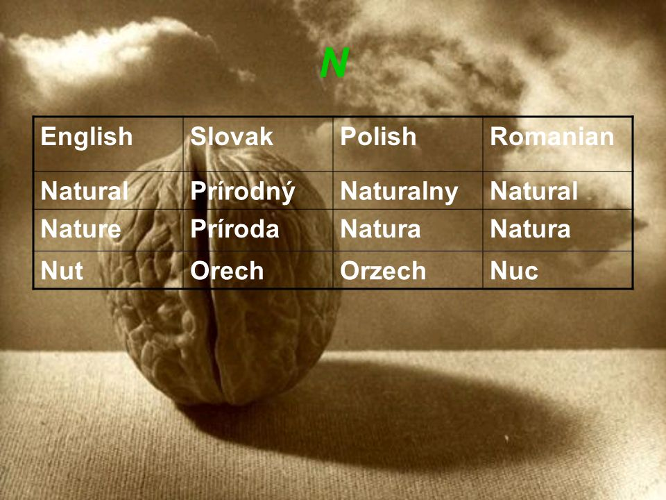N EnglishSlovakPolishRomanian NaturalPrírodnýNaturalnyNatural NaturePrírodaNatura NutOrechOrzechNuc