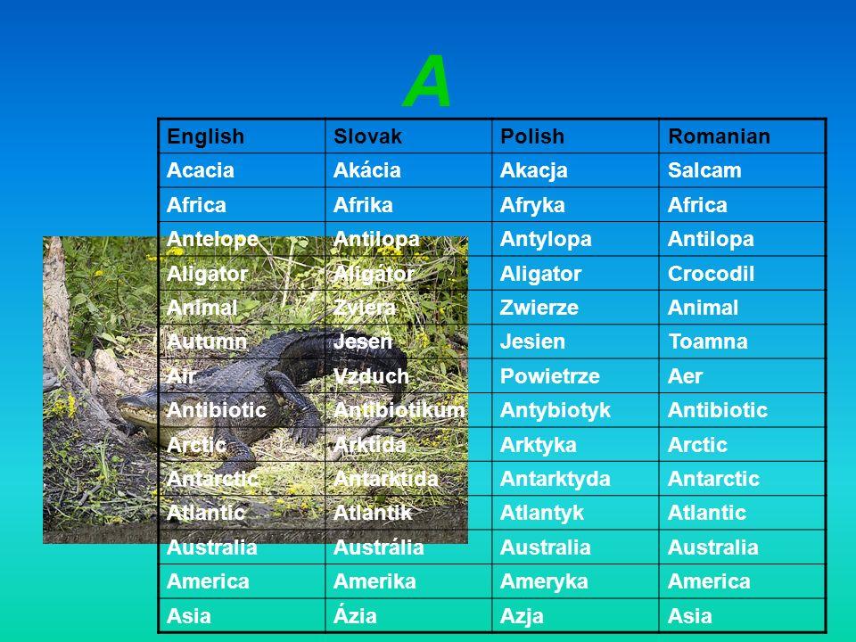 A EnglishSlovakPolishRomanian AcaciaAkáciaAkacjaSalcam AfricaAfrikaAfrykaAfrica AntelopeAntilopaAntylopaAntilopa AligatorAligátorAligatorCrocodil Anim