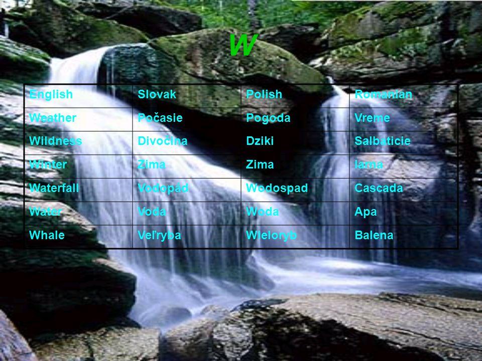 W EnglishSlovakPolishRomanian WeatherPočasiePogodaVreme WildnessDivočinaDzikiSalbaticie WinterZima Iarna WaterfallVodopádWodospadCascada WaterVodaWoda