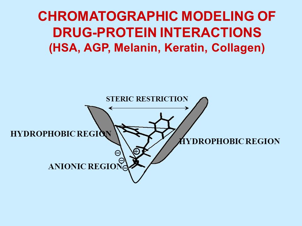 CHROMATOGRAPHIC MODELING OF DRUG-PROTEIN INTERACTIONS (HSA, AGP, Melanin, Keratin, Collagen) STERIC RESTRICTION HYDROPHOBIC REGION + ANIONIC REGION