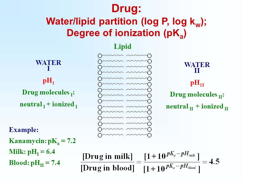 WATER I pH 1 Drug molecules I : neutral I + ionized I WATER II pH 1I Drug molecules II : neutral II + ionized II Example: Kanamycin: pK a = 7.2 Milk: pH I = 6.4 Blood: pH II = 7.4 Lipid Drug: Water/lipid partition (log P, log k w ); Degree of ionization (pK a )