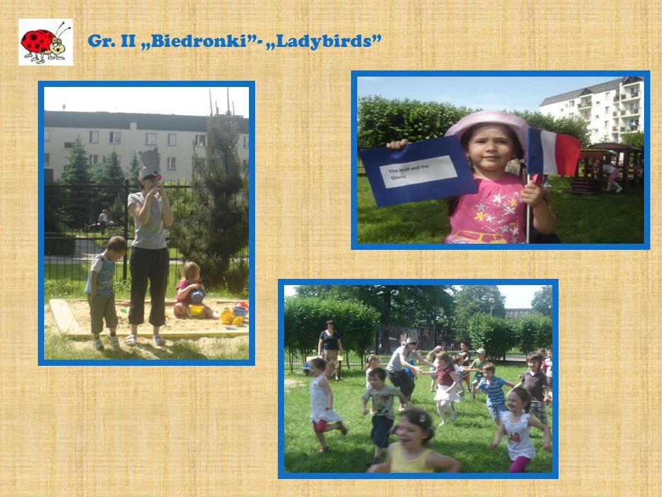 Gr. II Biedronki- Ladybirds