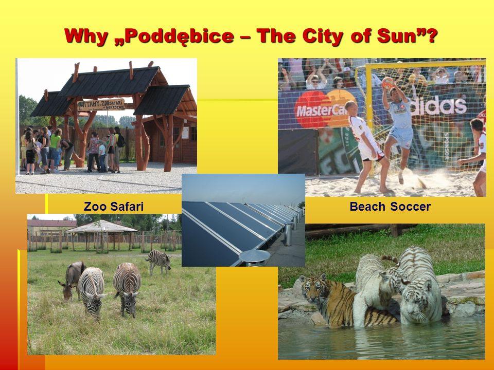 Why Poddębice – The City of Sun? Beach SoccerZoo Safari