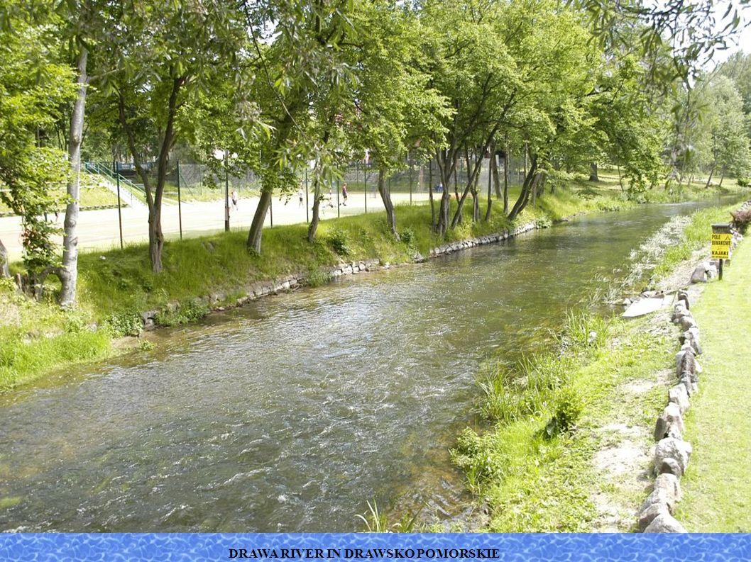DRAWA RIVER IN DRAWSKO POMORSKIE