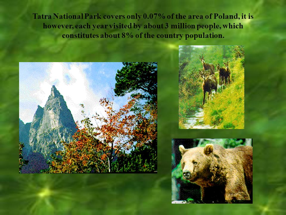 The National Park was established in 1954 and cover the area of 21,556 ha.