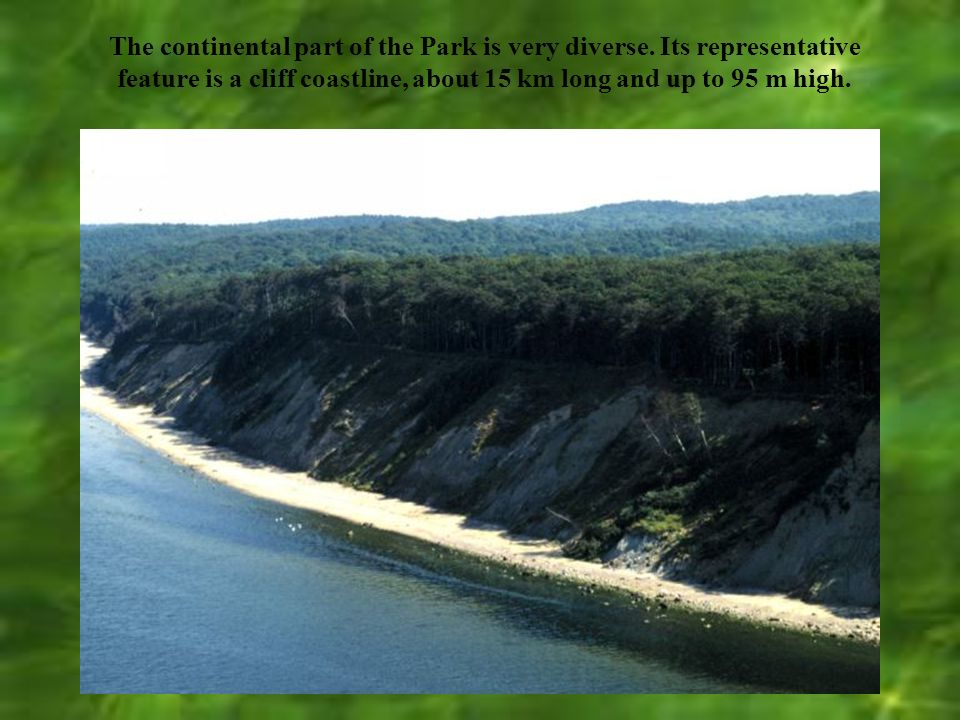 Park area is 10,937 ha and includes 4,458 ha of forests. Area of 224 ha is strictly protected. It is 6 forests zones.