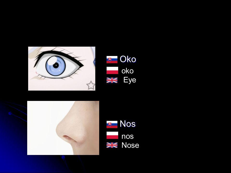 OkoNos oko nos Eye Nose