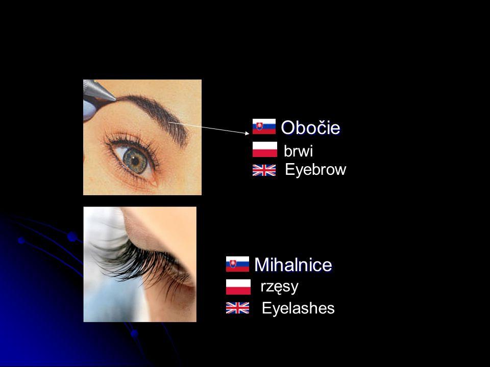Obočie ObočieMihalnice brwi rzęsy Eyebrow Eyelashes