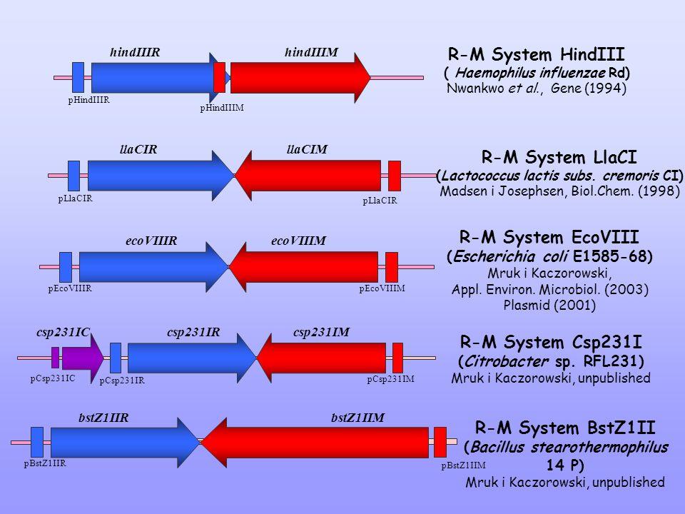 R-M System HindIII ( Haemophilus influenzae Rd) Nwankwo et al., Gene (1994) R-M System LlaCI (Lactococcus lactis subs. cremoris CI) Madsen i Josephsen