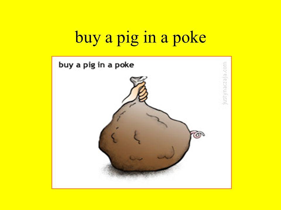 buy a pig in a poke