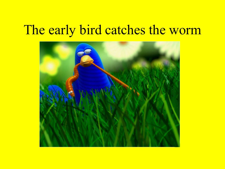 The early bird catches the worm