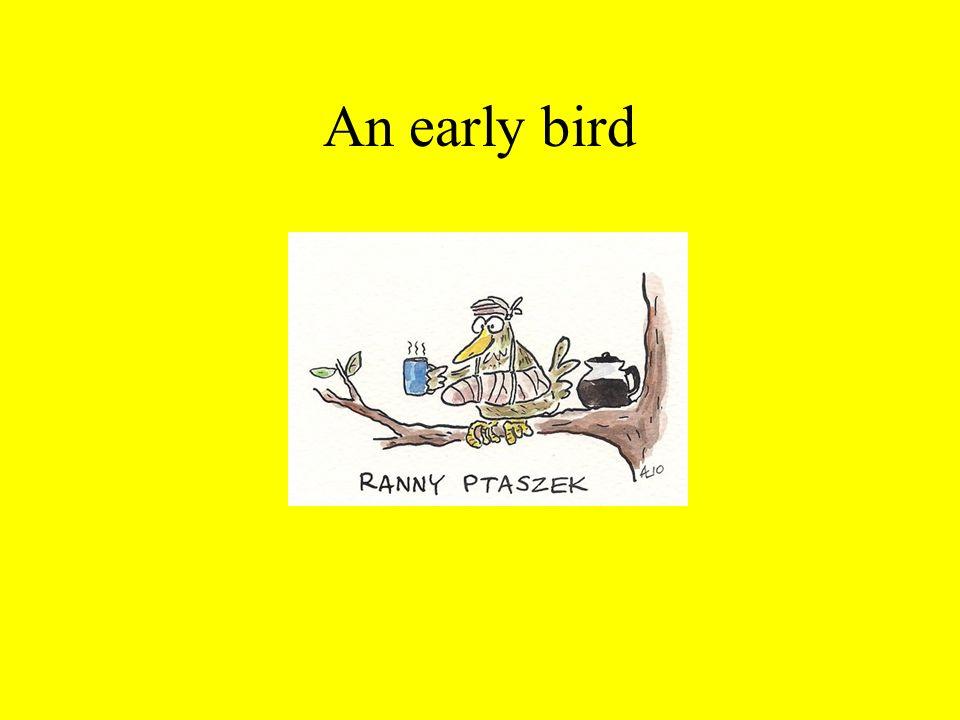An early bird