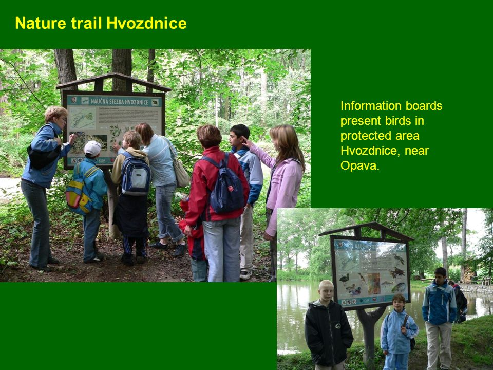 Nature trail Hvozdnice Information boards present birds in protected area Hvozdnice, near Opava.