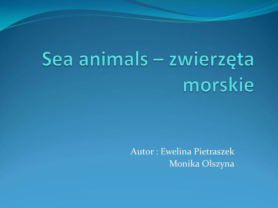 Autor : Ewelina Pietraszek Monika Olszyna