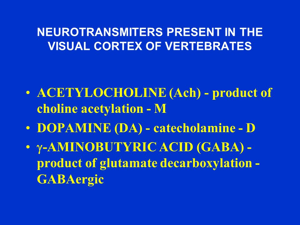 NEUROTRANSMITERS PRESENT IN THE VISUAL CORTEX OF VERTEBRATES ACETYLOCHOLINE (Ach) - product of choline acetylation - M DOPAMINE (DA) - catecholamine -