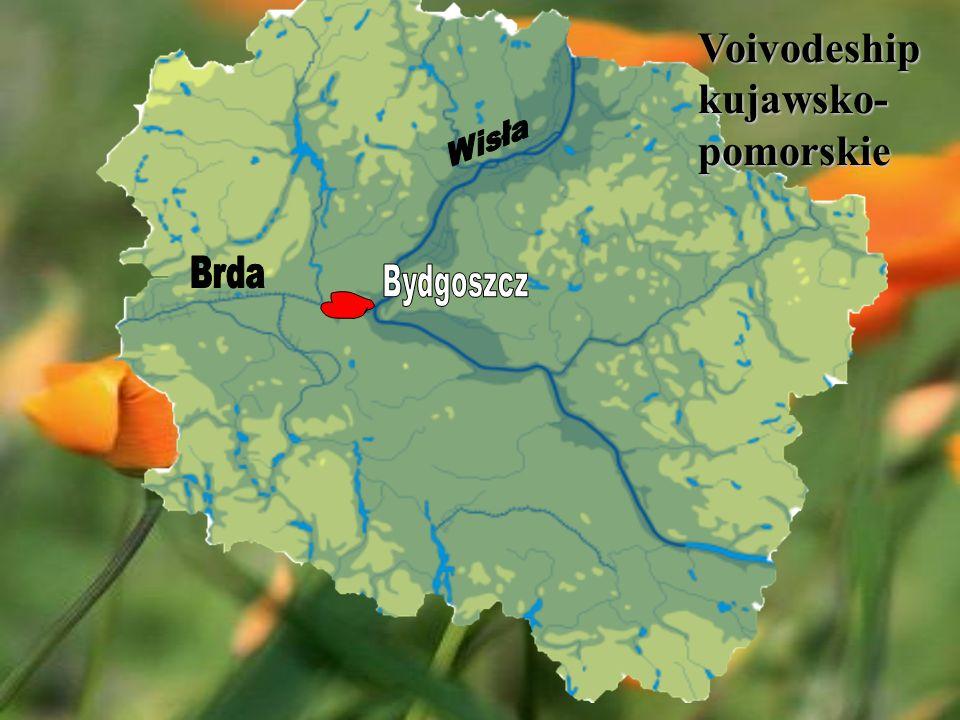 Voivodeship kujawsko- pomorskie