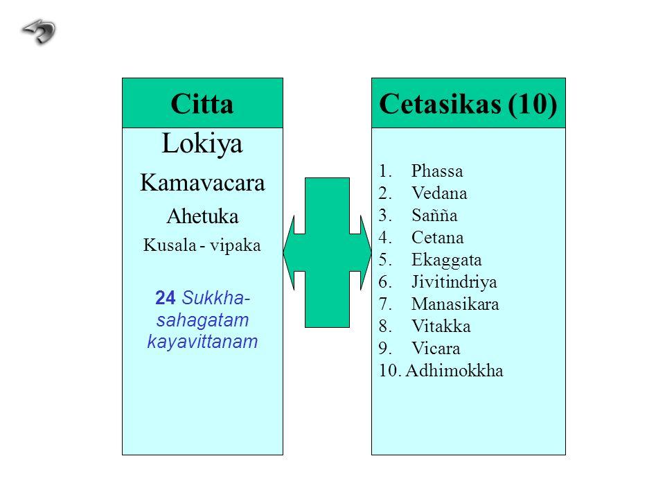 Lokiya Kamavacara Ahetuka Kusala - vipaka 24 Sukkha- sahagatam kayavittanam 1.Phassa 2.Vedana 3.Sañña 4.Cetana 5.Ekaggata 6.Jivitindriya 7.Manasikara
