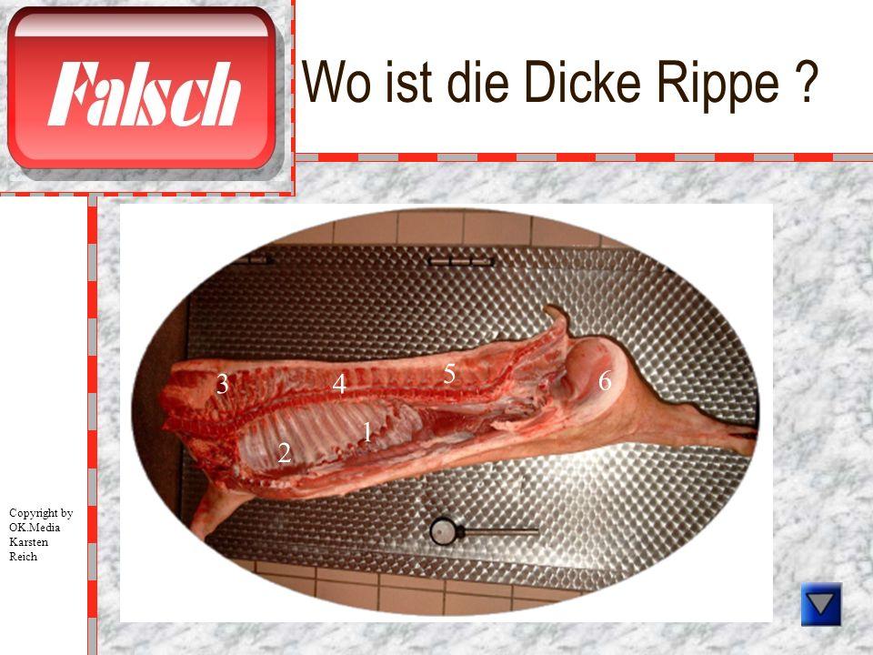 Wo ist die Dicke Rippe ? 1 2 3 4 5 6 Copyright by OK.Media Karsten Reich