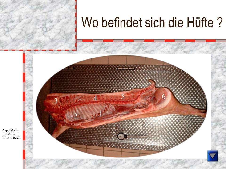 Wo befindet sich die Hüfte ? 1 2 3 4 5 6 Copyright by OK.Media Karsten Reich