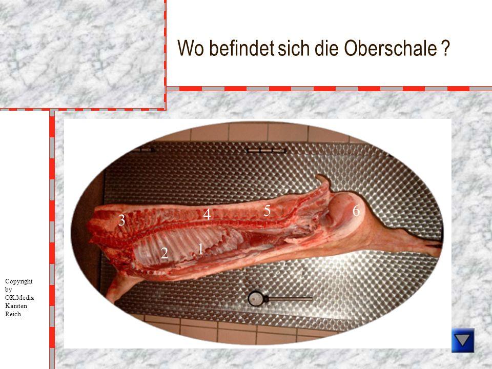 Wo befindet sich die Oberschale ? 1 2 3 4 5 6 Copyright by OK.Media Karsten Reich