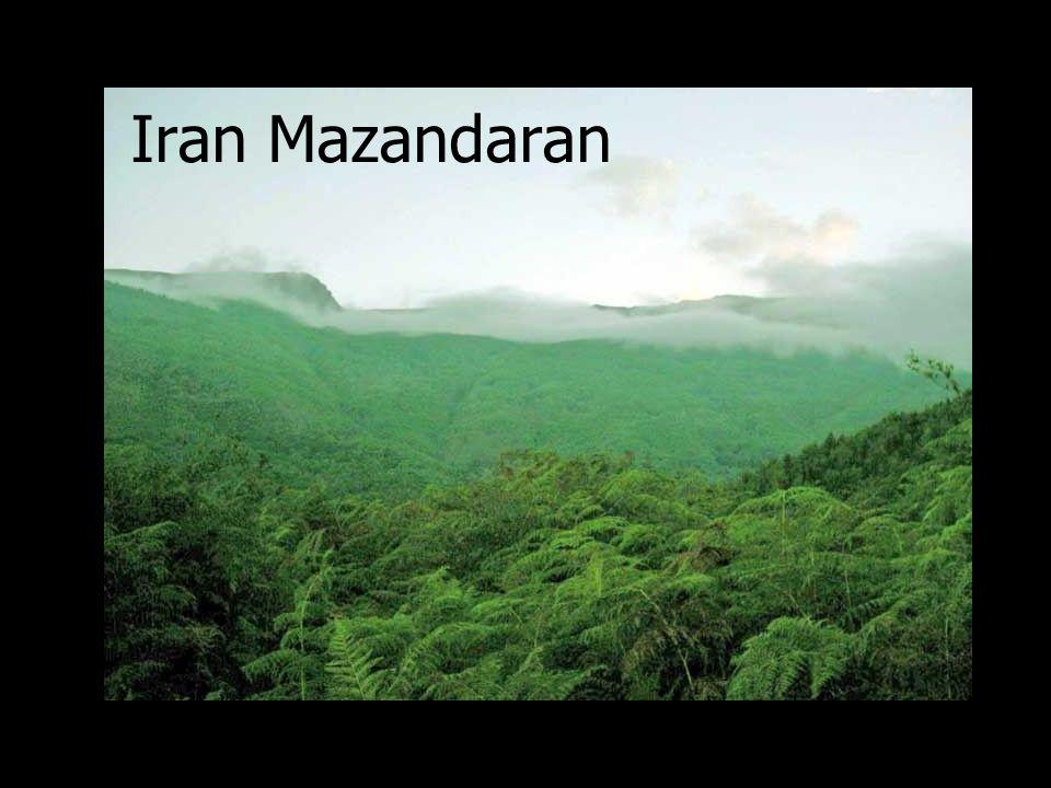 Iran Azarbayjan Dashte Moghan Iranian Amazing Collection